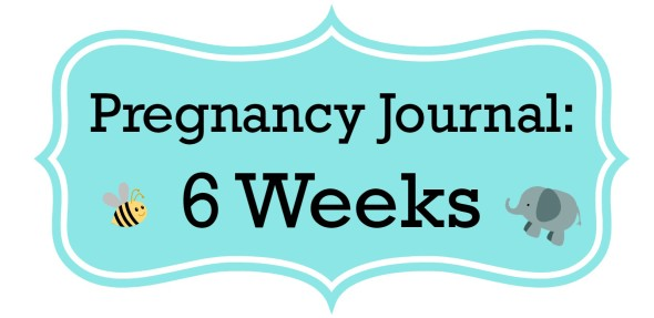 Pregnancy Journal Update: 6 Weeks