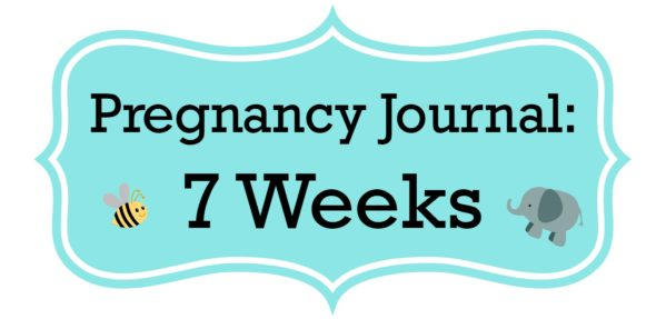 Pregnancy Journal Update: 7 Weeks