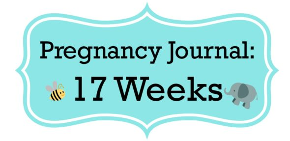 Pregnancy Journal Update: 17 Weeks