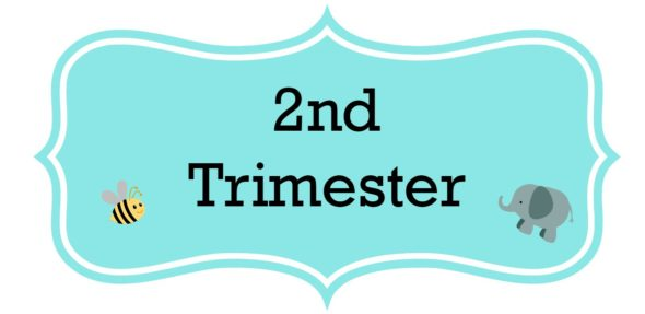 Pregnancy Journal Update – 2nd Trimester Wrap Up